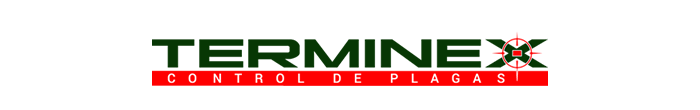 logo-alternativo